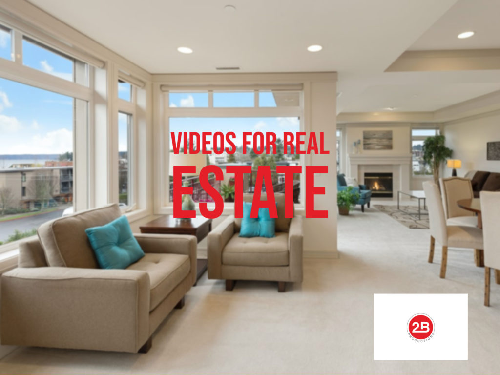 videos for real estate niche