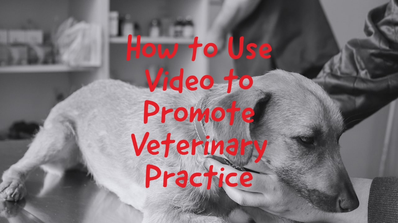 How to A Promote Veterinary Practice With Video